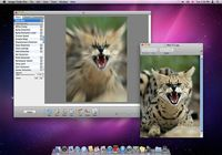 Image Tricks pour mac