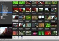 VideoPier HD pour mac