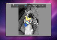 Colorize pour mac