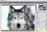 Akvis ArtSuite pour mac
