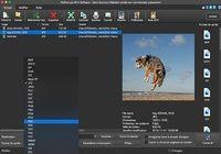 Pixillion - Convertisseur d'image (7.01) pour mac