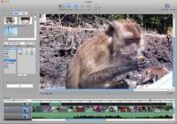VideoCanvas pour mac