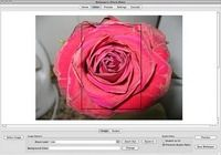 Wallpaperio iPhone Maker pour mac