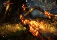 The Witcher 2 : Assassins of Kings pour mac