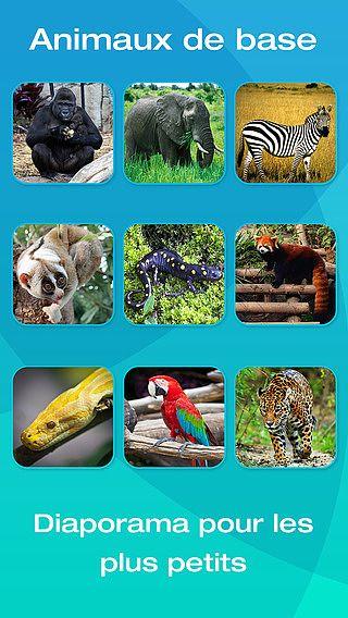 Safari et animaux de la jungle : Baby Flashcards - Une sélection pour mac