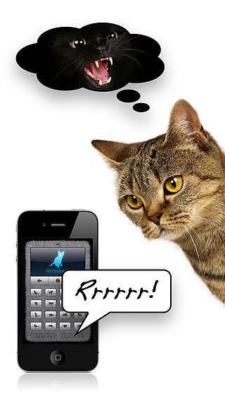 Traducteur en langage chat pour mac